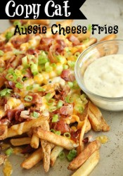 Copy Cat Outback Aussie Cheese Fries