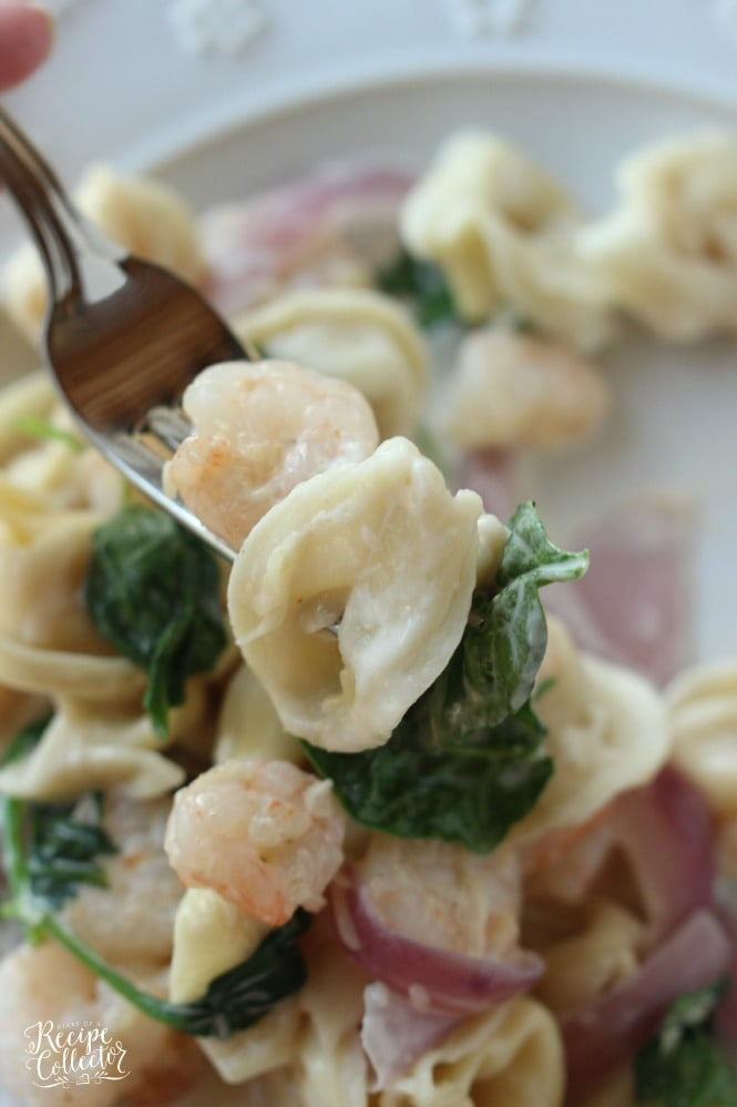Shrimp & Spinach Tortellini - A creamy cheese tortellini pasta that is super quick and easy to make!