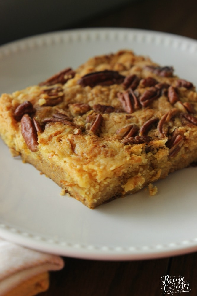 Pumpkin Pecan Cake - An easy pumpkin dessert made with only a few ingredients!