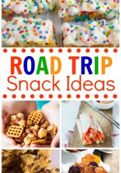 20+ Road Trip Snack Ideas