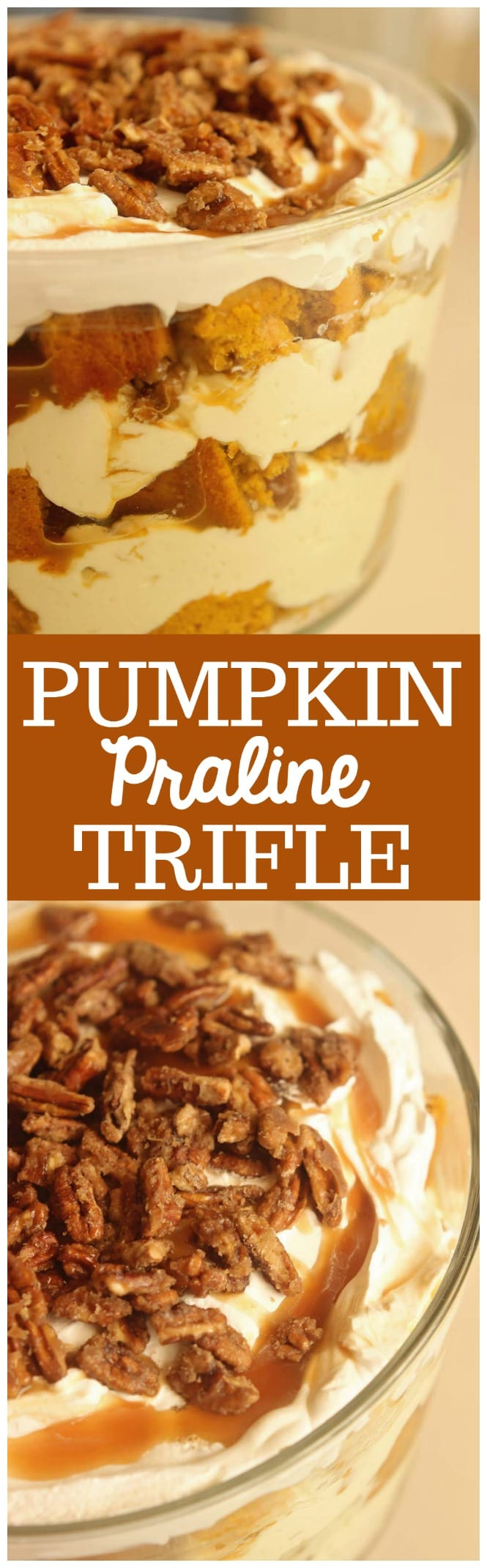 Pumpkin Praline Trifle - This is the ultimate fall dessert recipe with layers of easy pumpkin cake, cream cheese pudding, caramel, and praline pecans.  It's delicious made ahead and great for the busy holiday dinners!