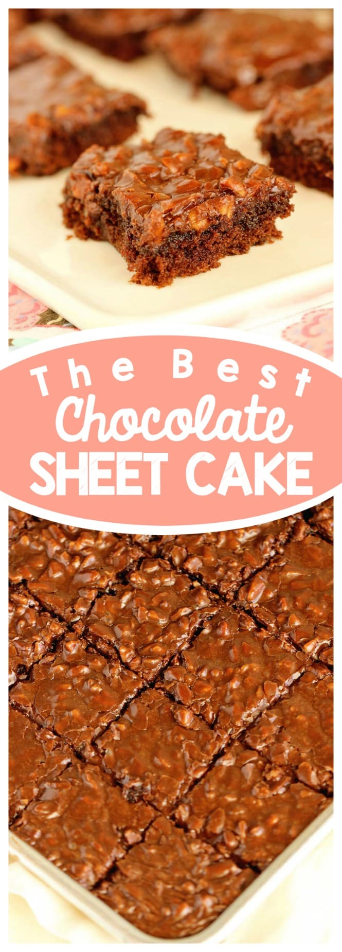 Best Chocolate Sheet Cake Recipe - This homemade chocolate cake with a homemade chocolate pecan icing is one of the best chocolate desserts ever!  There's nothing better than an old-fashioned recipe like this one!