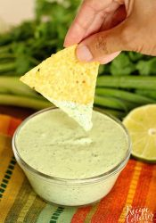 Cilantro Dip - A spicy sauce filled with cilantro, jalapeno and serrano peppers, and lime.  It's great to use as a dip, a dressing, and even a marinade!