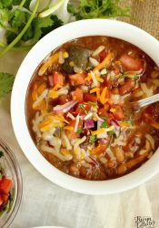 Instant Pot Mexican 16 Bean Soup