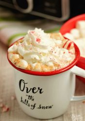 Slow Cooker Hot Chocolate - An old-fashioned hot chocolate recipe perfect for the holidays and so easy to make in the slow cooker!